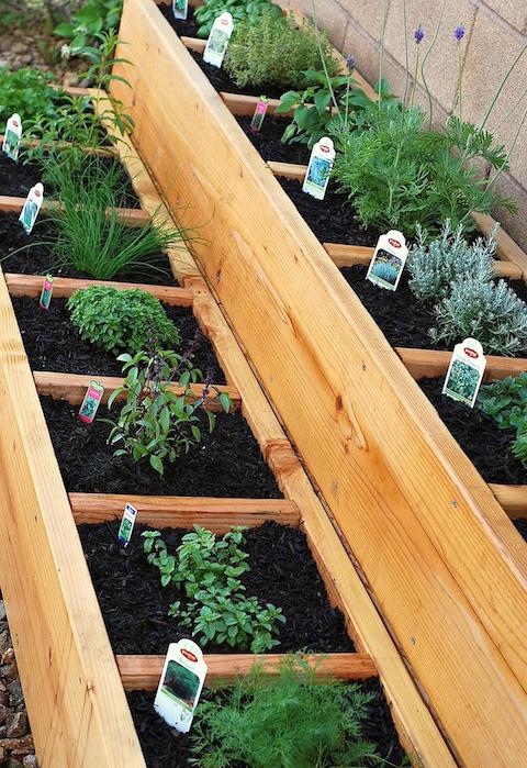 Raised-Bed-Herb-Garden