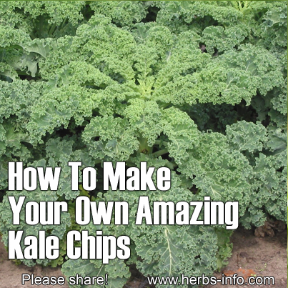 How To Make Your Own Amazing Kale Chips