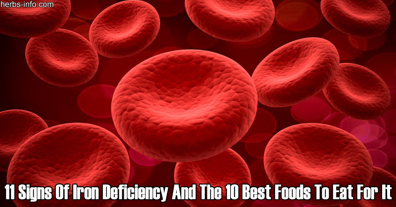 11 Signs Of Iron Deficiency And The 10 Best Foods To Eat For It