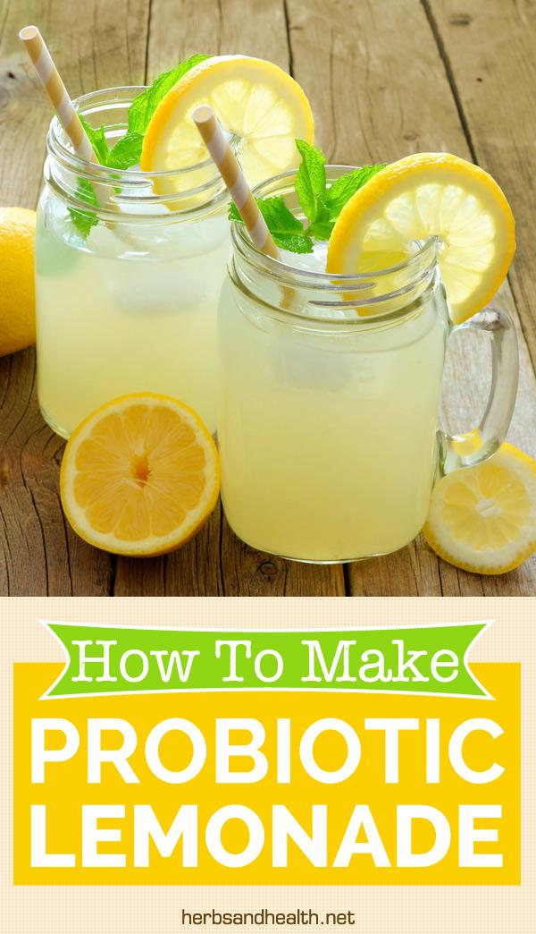 How To Make Probiotic Lemonade